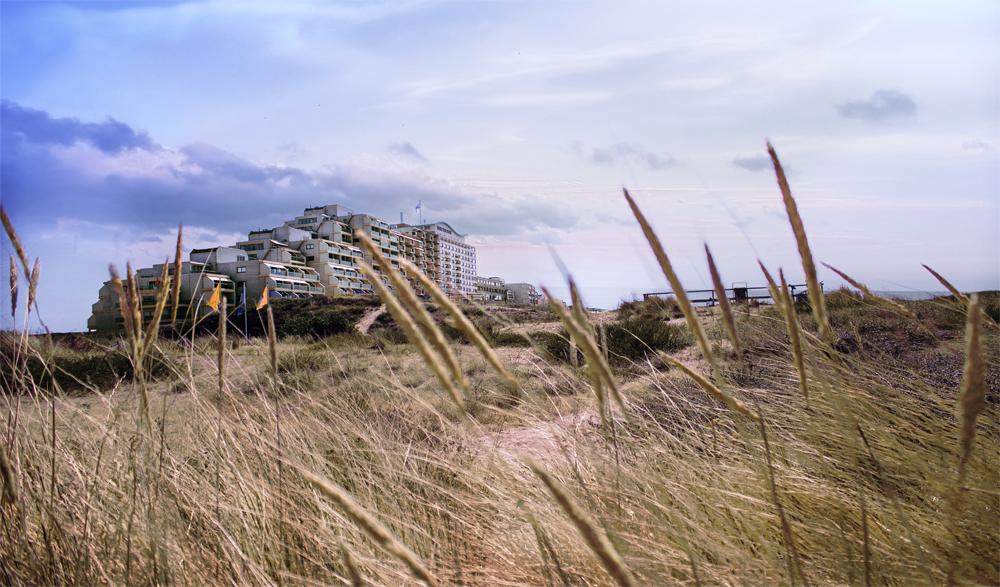 """Landschaftsaufnahme in Noordwijk, Niederlande, Dünen Artikelbild für den Blogpost """"Sind Prinzipien nur Ballast?"""" vom 19.08.2018 auf www.coloredcube.de"""